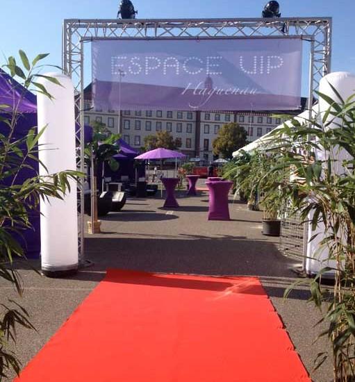 Espace VIP Festive Move en Scène et Stars 80 à Haguenau